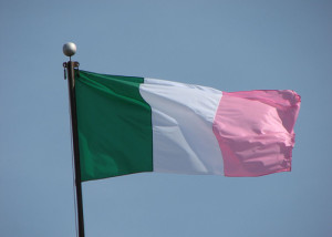 The NL Tricolor is believed to be the inspiration behind the Irish Orand, White and Green
